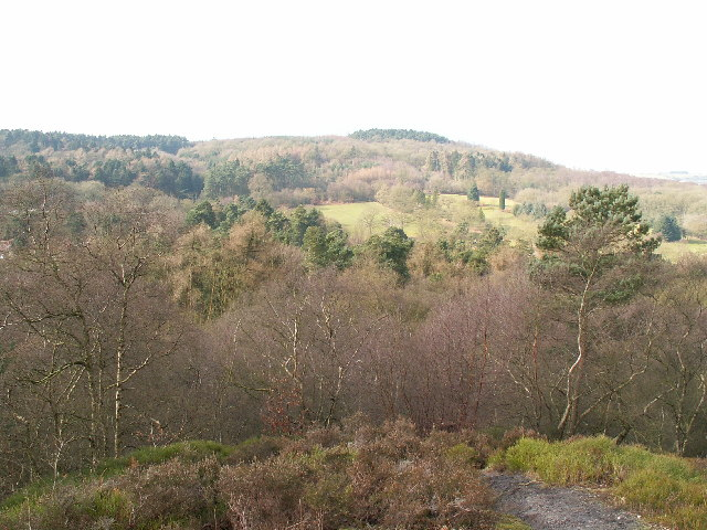 Lickey Hills Country Park | Image Resource : wikimedia.org
